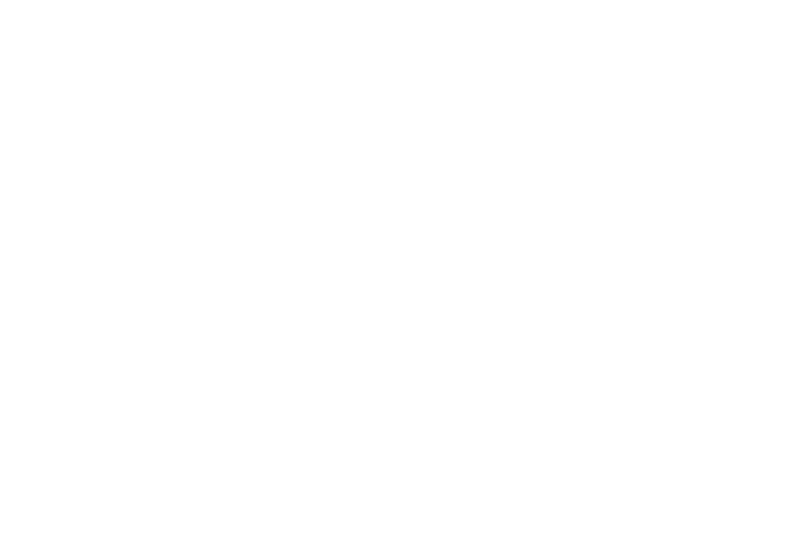 WAYFAIR, Global leader in online sales of furniture and home goods