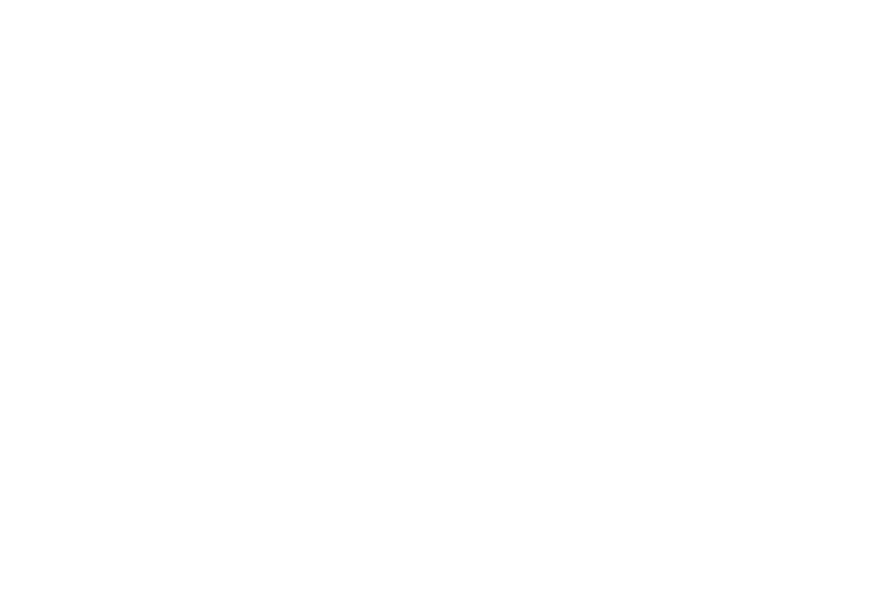 IRON MOUNTAIN | Corporate data storage and information security